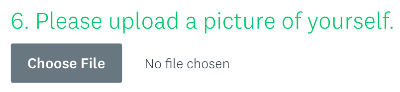 How the file upload question can look