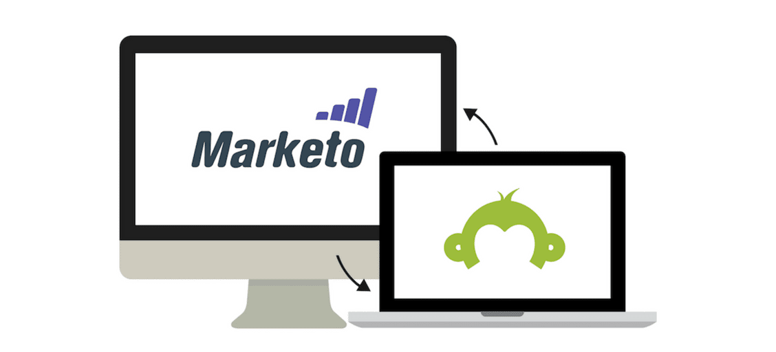 Better qualify and nurture leads with SurveyMonkey for Marketo
